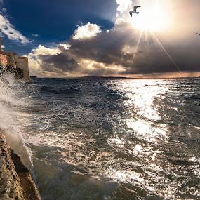 Island Rab by Petar Lupic - Landscapes Weather ( zvonici, banova vila, rab, croatia, galebi, petar lupic, hrvatska )