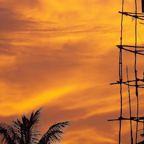 golden sunset by Anudeep Nethi - Landscapes Sunsets & Sunrises ( sunset )