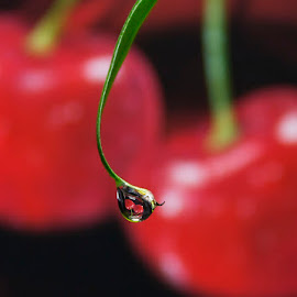 Cherry drops by Chris Duffy - Abstract Water Drops & Splashes ( cherry, fruit, red, waterdrop, refraction )