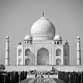 Taj Mahal BW by Pradeep Kumar - Buildings & Architecture Public & Historical