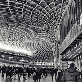 King's Cross Station, London by Helen Mathias - Buildings & Architecture Other Interior ( king's cross, ceiling, station, london railway )