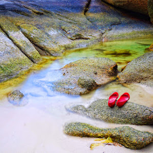 red shoes on the rock.jpg