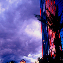 Blimp over Rio by Gayle Mittan - Buildings & Architecture Office Buildings & Hotels ( clouds, reflection, building, silhouette, rio hotel, blimp, storm, dusk, las vegas, palm tree, flying, color, nevada, sunset, neon, rio casino,  )
