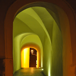 Illustration by J & M - Buildings & Architecture Public & Historical ( illustration, image, night, view, tunnel )