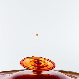 by Ben Porway - Abstract Water Drops & Splashes ( water, orange, highspeed, red, liquid, splash, drop, blood, collision )