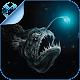 Deep Sea & Ocean Fish Quiz HD