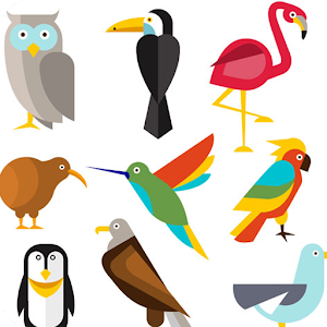 Download How to draw birds For PC Windows and Mac