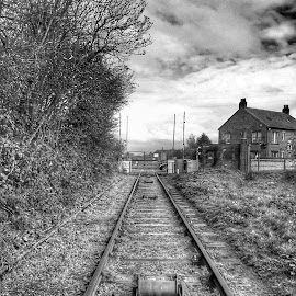 by Damo Williams - Buildings & Architecture Public & Historical ( black and white, transportation )