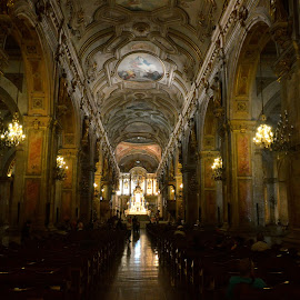 Santiago Metropolitan Cathedral by Austin Speaker - Buildings & Architecture Places of Worship ( chile, baroque, cathedral, santiago, nave )