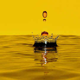 Water crown by Fred Øie - Abstract Water Drops & Splashes ( abstract )