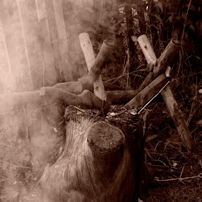 Axe by Giantfromsiberia Photographer - Artistic Objects Other Objects ( stump smoke, axe )