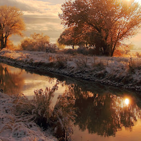 Heart of Gold.. by Dennis Ducilla - Landscapes Waterscapes ( clouds, snow, fall, white, reflections, trees, gold, ducilla, river )