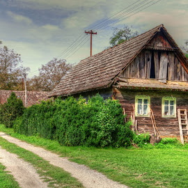 Wood house by Dominic Jacob - Buildings & Architecture Homes ( village, wood, green, little, house )