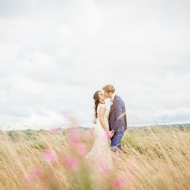 Amongst the Fields of Barley by Paul Duane - Wedding Bride & Groom ( field, love, married, ireland, wedding, bride )
