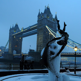 Girl, Dolphin and Icicles by DJ Cockburn - Buildings & Architecture Statues & Monuments ( civil engineering, uk, girl with a dolphin, tower hamlets, streetlight, bascule bridge, architecture, cityscape, frozen, icicle, city, urban, statue, england, winter, london, ice, fountain, tower bridge, victorian, sculptor, river thames )