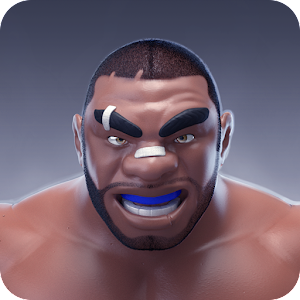 MMA Manager For PC (Windows & MAC)