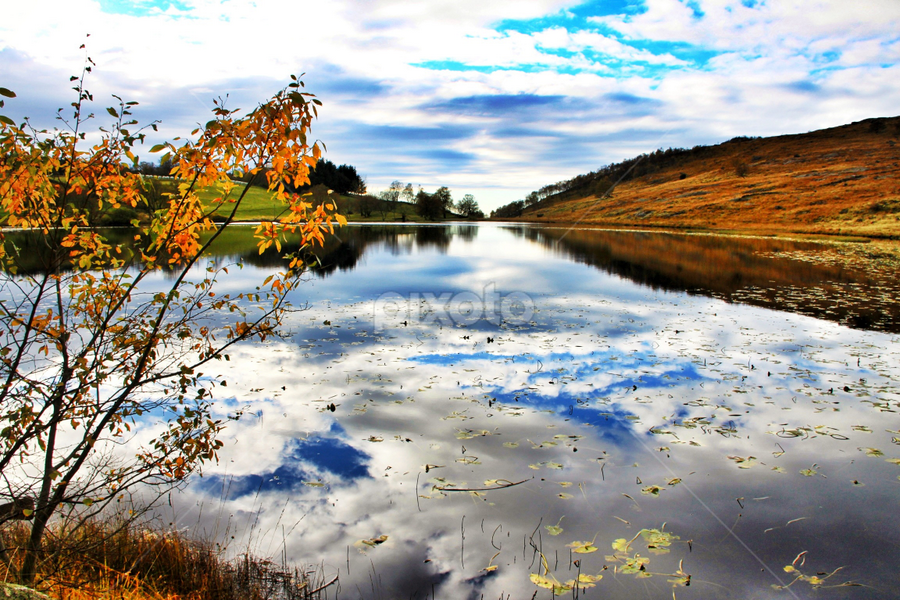 Reflections by Rune Helliesen - Landscapes Waterscapes ( reflection, autumn, water )