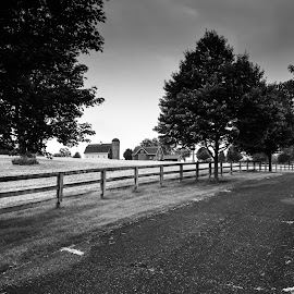 The Farm by Al Koop - Landscapes Prairies, Meadows & Fields ( farm,  )