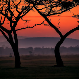 by Denis Smit - Landscapes Sunsets & Sunrises
