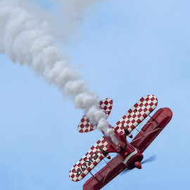 Pitts Special by Tim Nicholson - Transportation Airplanes