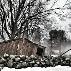 New England Fog by Lisa LaBelle - Instagram & Mobile Android ( spring melting, new england, stonewall, fog, collapsed shed, landscape, rain,  )