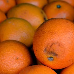 Orange at Store by Vinod Rajan - Food & Drink Fruits & Vegetables ( orange, oranges, fruits, fruit, display, yellow, store, vegetables, food,  )