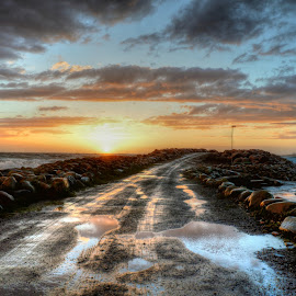 Where's next? by Frøydis Folgerø - Landscapes Waterscapes ( wind, sunset. wind, sunset, sea, karl, nightfall, hurricane )