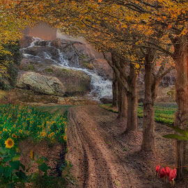 by Bruce Cramer - Landscapes Mountains & Hills