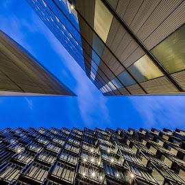 Ofice building in London  by Selaru Ovidiu - Buildings & Architecture Office Buildings & Hotels ( london )