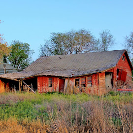 The old Barn by Lawrence Doane - Buildings & Architecture Decaying & Abandoned