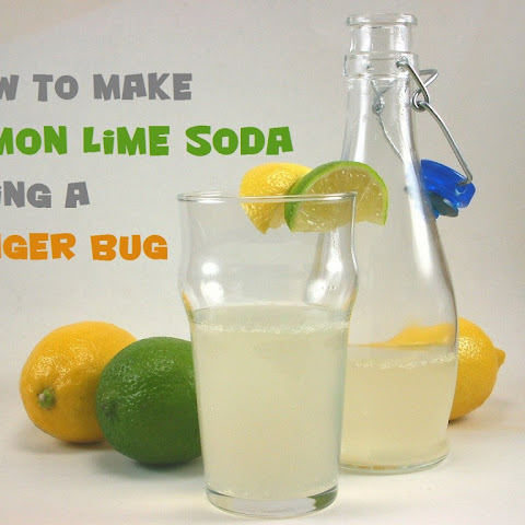 Lemon Lime Ginger Bug Soda