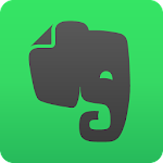 Evernote – Organizer, Planner, Notebook Icon