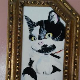 My precious cat who passed by Bridget Kaskeski - Animals - Cats Portraits