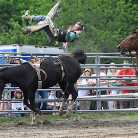 High In The Air by Nina VanDeleur - Sports & Fitness Rodeo/Bull Riding ( bronco cowboy, rodeo )