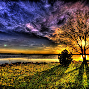 Buds by DE Grabenstein - Landscapes Sunsets & Sunrises ( sunset, trees, lake, nebraska )
