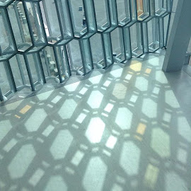 Harpa Glass by Lynda Birt - Instagram & Mobile Other
