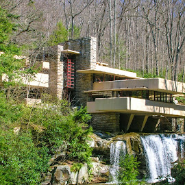 by Matt Meyers - Buildings & Architecture Homes ( frank lloyd wright, pennsylvania, architecture, fallingwater )