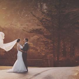love2 by Konrad Świtlicki-Paprocki - Wedding Bride & Groom