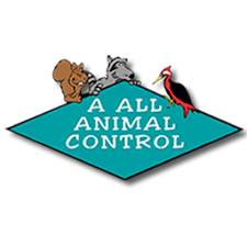 A All Animal Control Tampa