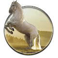 Running Horse HD Wallpaper APK for Ubuntu