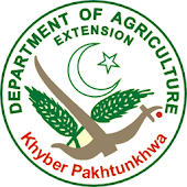Agriculture Extension KP