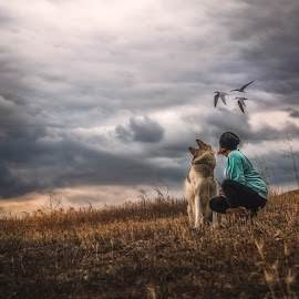 Flying Visitors by Apollo Reyes - People Street & Candids ( clouds, girl, sky, wolf, seagulls, dog, birds, fields )