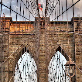 Brooklyn Bridge by Carol Plummer - Buildings & Architecture Bridges & Suspended Structures