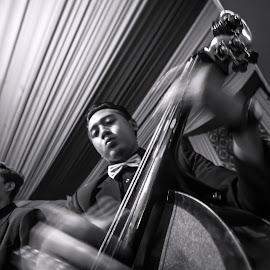Keroncong Cello Player by Barrock Adji - People Musicians & Entertainers ( music, sigma, indonesia, traditional, keroncong, nikon, cello )