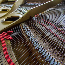 My Piano  9125 by Karen Celella - Artistic Objects Musical Instruments ( music, piano, grand, focus stacking, instrument,  )