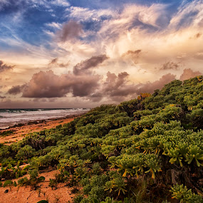 Cozumel by Cristobal Garciaferro Rubio - Landscapes Travel ( clouds, sky, cozumel grass, beach )