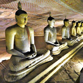 Buddhas in cave temples by Svetlana Saenkova - Buildings & Architecture Statues & Monuments ( cave, sri lanka, buddha, row )
