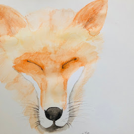 Fox by Anika McFarland - Painting All Painting ( watercolor, fox, watercolors, fox painting, painting )