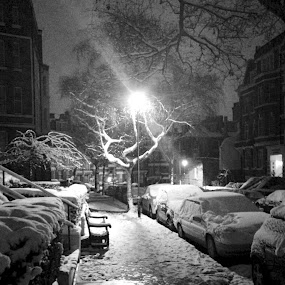 Snowy London Street  by Joe Proctor - City,  Street & Park  Street Scenes ( dawn, bench, black & white, snow, street, illumination, lamp post, light, sidewalk )