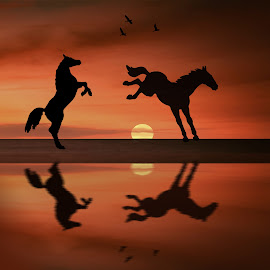 Horses in the Sunset by Jan Murphy - Digital Art Animals ( water, orange, horses, sunset, horse, digital art, reflections, sun,  )